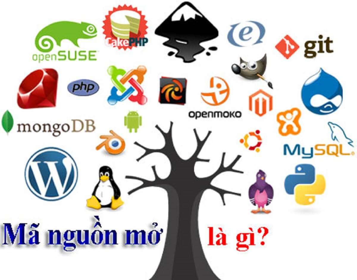Mã nguồn mở là gì? Những lưu ý cần biết về mã nguồn mở
